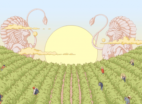 Ruinart – Harvest